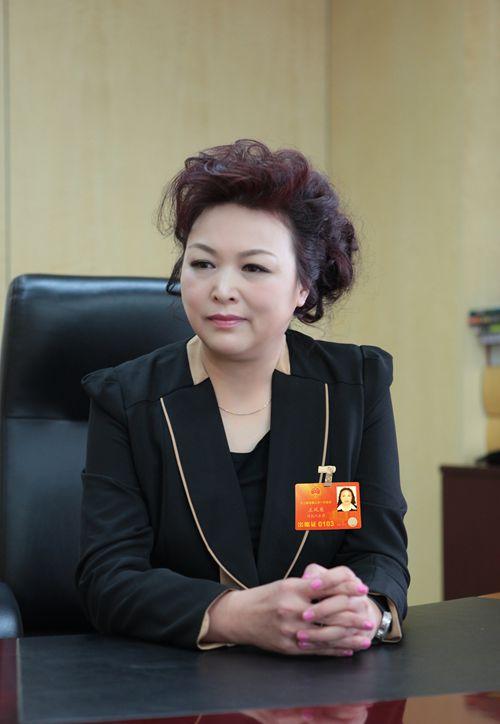 王凤英代表:征收拥堵费需谨慎 决策过程须公开透明