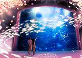 都水族馆互动艺术活动 体验梦幻春色