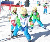 北京冬奥会引蝴蝶效应:滑雪人次一年增21.36%