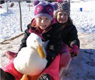 组图:小鸭子把5岁女孩认作妈妈 一起游泳一起滑雪