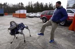 """谷歌""""大狗""""机器人测试被狠踢猛踹"""