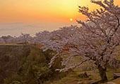 """奇幻异彩的""""天空之城""""——竹田城遗址"""