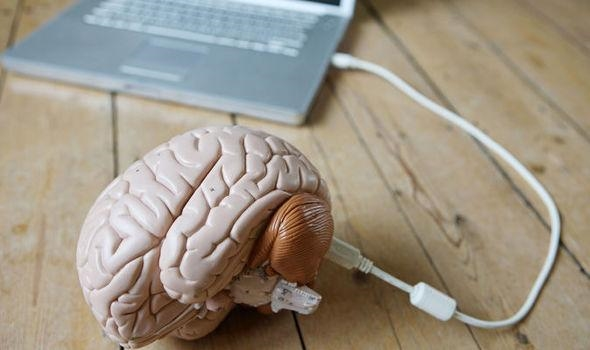 大脑拷贝数据实现:普通人瞬间学会开飞机
