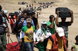 欧盟开始向土耳其遣返难民