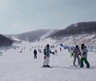 滑雪火爆 人数或达2600万