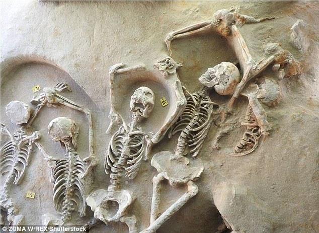 希腊出土80具遗骸 或源自公元前7世纪古希腊