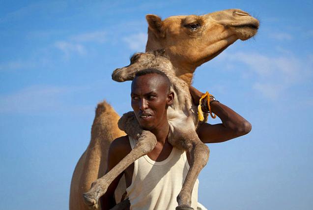 法摄影师耗时10年拍人与动物亲密瞬间