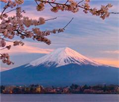 日本开发中文等语音翻译应用软件引导外国游客