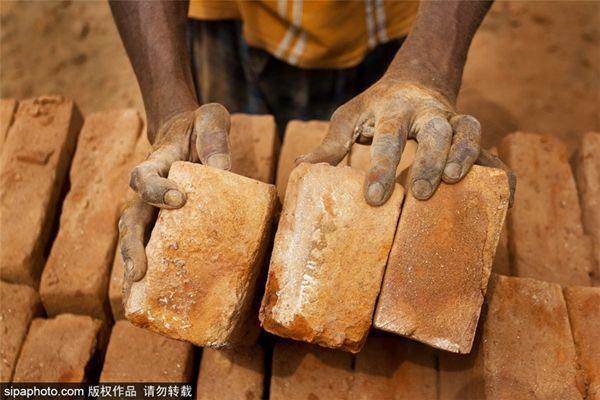 五一国际劳动节:揭秘各国工人的艰辛生活