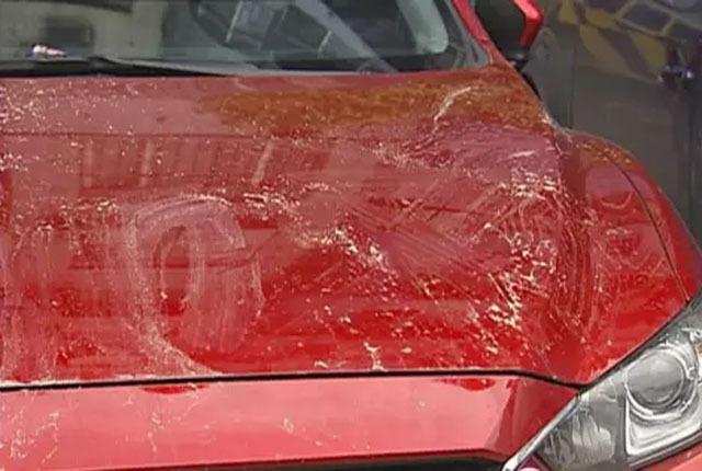 广州3熊孩子用沙子半小时毁容1辆车