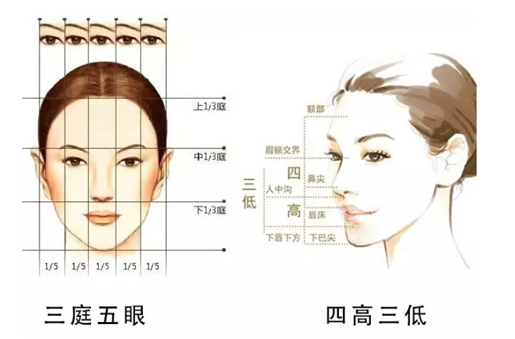 标准美女到底长啥样?你的脸离「标准」有多远?