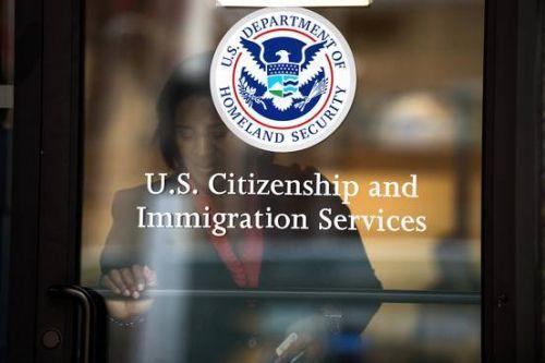 连续多年供不应求 美国H1B工作签证被指亟需改革