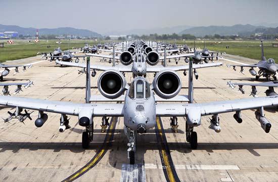 美国军机玩大象散步密密麻麻