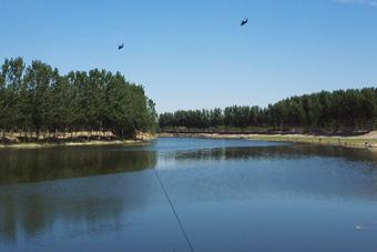 钓着鱼直10编队突然低空通过