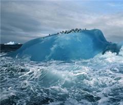 去南极旅游必知的21件事