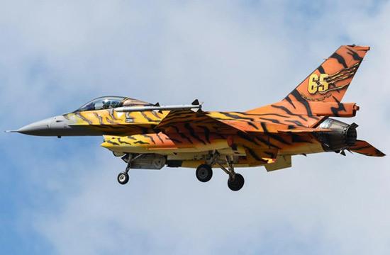 上百架老虎涂装战机集体亮相