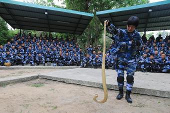中泰联训:女兵拎起3米眼镜蛇