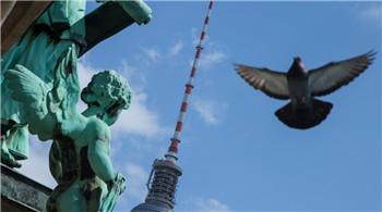 漫步柏林街头 感受日耳曼民族的日常生活