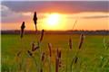 英国Keyhaven沼泽落日时分 柔光笼罩静谧绝美
