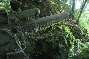 贝里琉战场 大炮已变成绿色