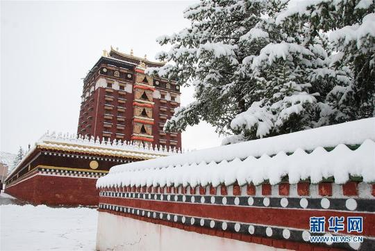 甘肃甘南藏区夏日突降大雪