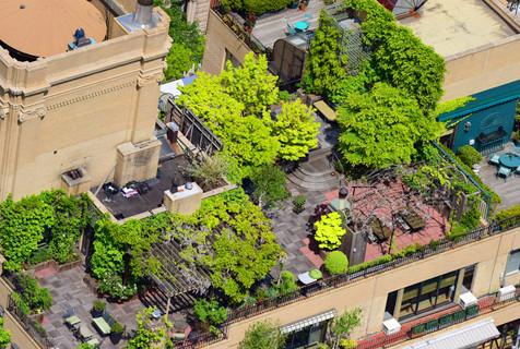 纽约民众高楼顶建造迷你空中花园