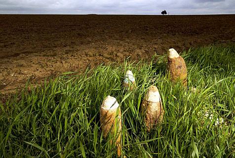 摄影师耗时400天拍法国索姆河战区
