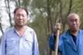 石家庄两残疾老人合作种树 被美国CNN报道