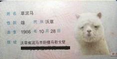 萝莉说趣事 :涨知识!中国最牛身份证