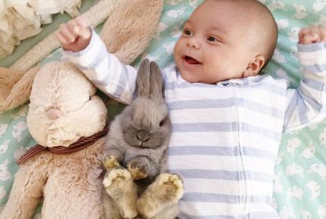 摄影师母亲拍小儿子与绒毛兔的友情