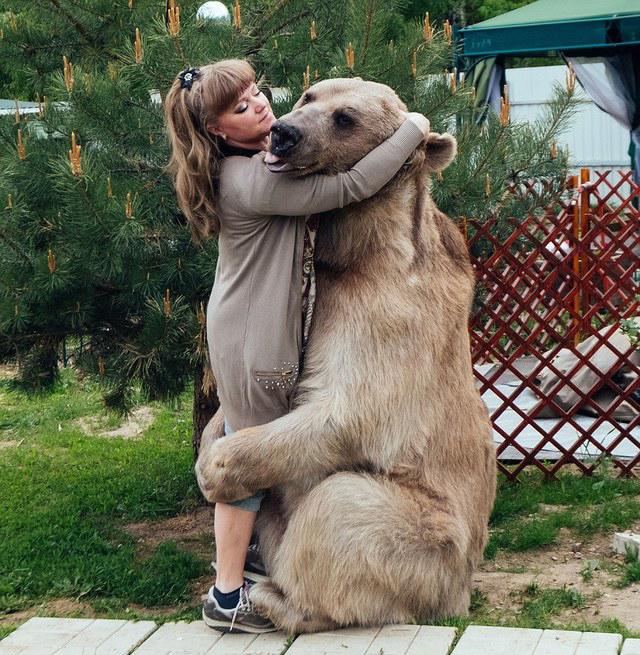 俄罗斯夫妇养23岁大熊