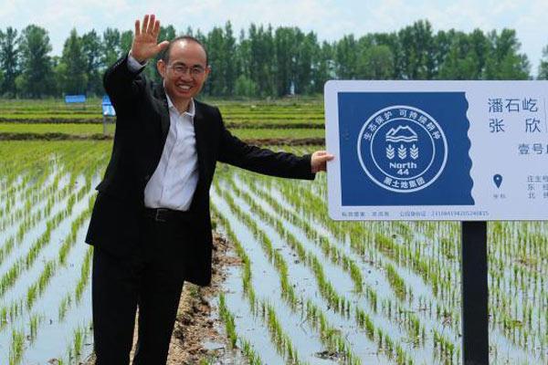潘石屹认领农田 农业大咖圈再添潘大米