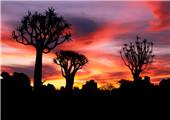 惊艳纳米比亚 感受不一样的旅程