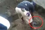 男挖开死去15年祖父坟墓
