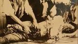 日本731部队女体实验 活体解剖女子全过程