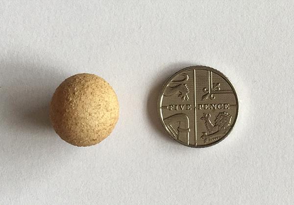 英女子发现世界最小鸡蛋 高仅1.55厘米