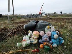 专家称在乌坠毁马航客机或是被导弹意外击中