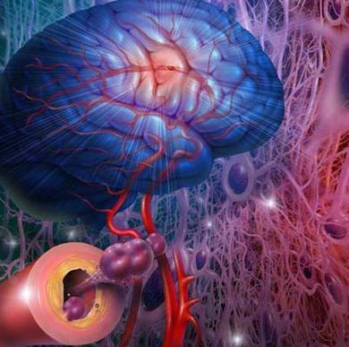 """韩研究:在头上""""开窗""""治疗脑血管脑细胞"""