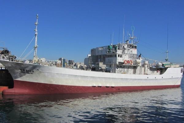 韩一远洋渔船作业时生乱 越南船员杀死韩国船长-国际新闻_国际新闻_