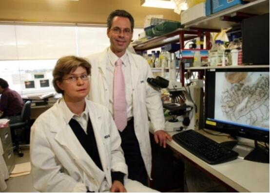 澳研究发现抑基因突变新药 有助女性预防乳癌