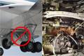 喵星人又蹭机:躲进波音737客机轮舱飞到无锡