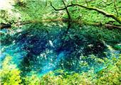 日本旅游自由行景点·青森县的白神山地