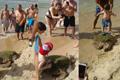 濒危海龟遭游客强行拖拽拍照 头部受损奄奄一息