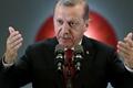土耳其总统就击落俄罗斯战机向普京道歉
