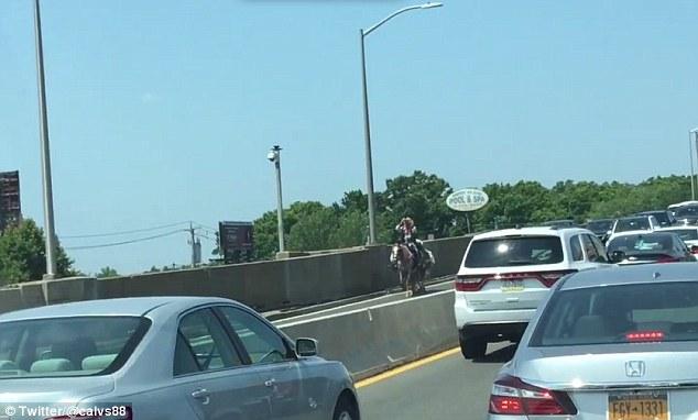 """美国一""""牛仔""""骑马过大桥引发交通堵塞"""