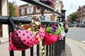 英国女子学院胸罩内种花种草推行环保