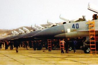中国曾用狗皮大衣换苏27战机