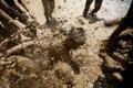 尼泊尔庆祝国家水稻日 民众互泼泥浆祈福
