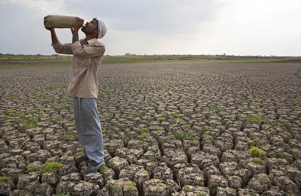 印度高温干旱成灾缺水致暴