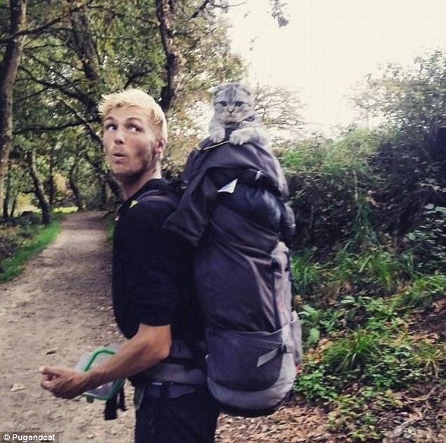 外国两男子带萌猫萌狗徒步漫游西班牙